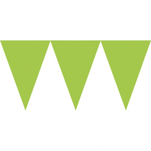 Vlajka světle zelená 450cm